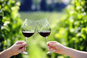 Toasting with two glasses of red wine in the vineyard