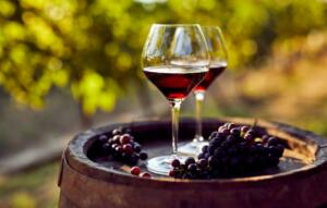 wine tastings at Healdsburg Wineries