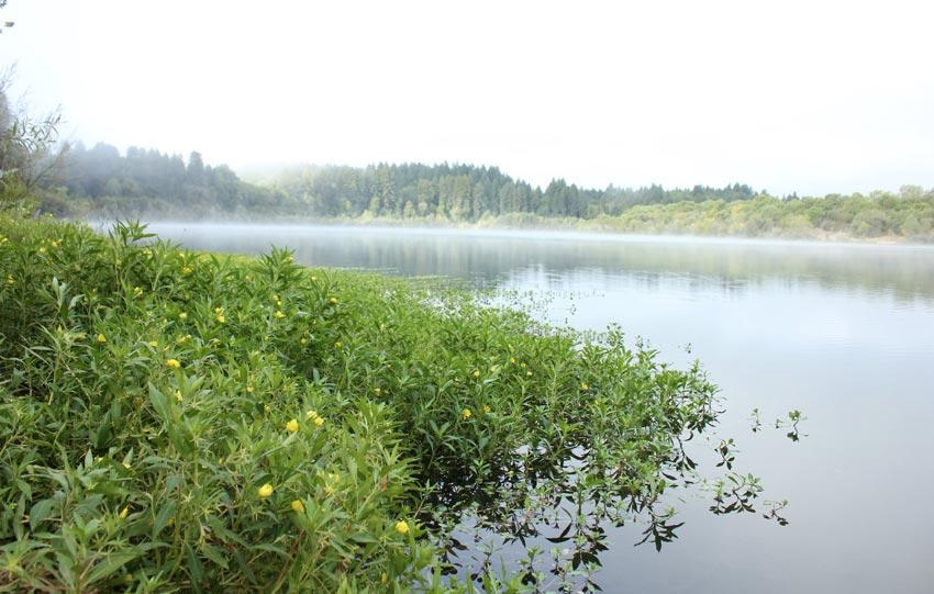 Explore Riverfront Regional Park
