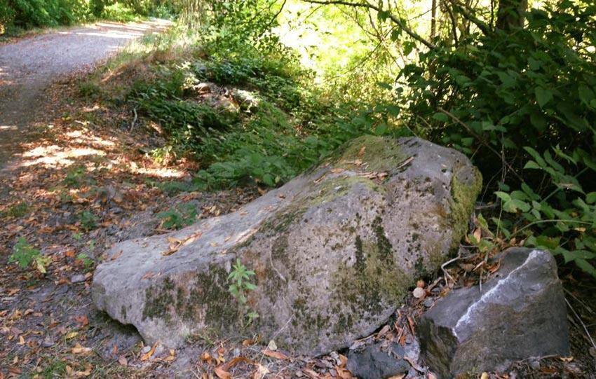Riverfront Regional Park trails