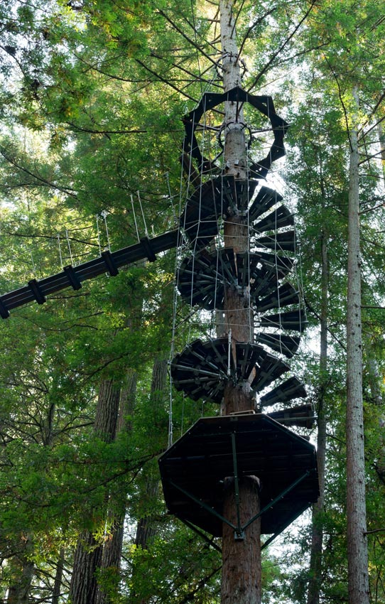 Spiral Staircase at Sonoma Canopy Tours